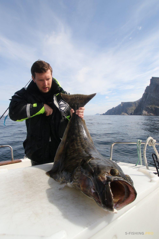 World Fishing Tackle: Автор Михаил Евгеньевич : Советы новичку по морской рыбалке