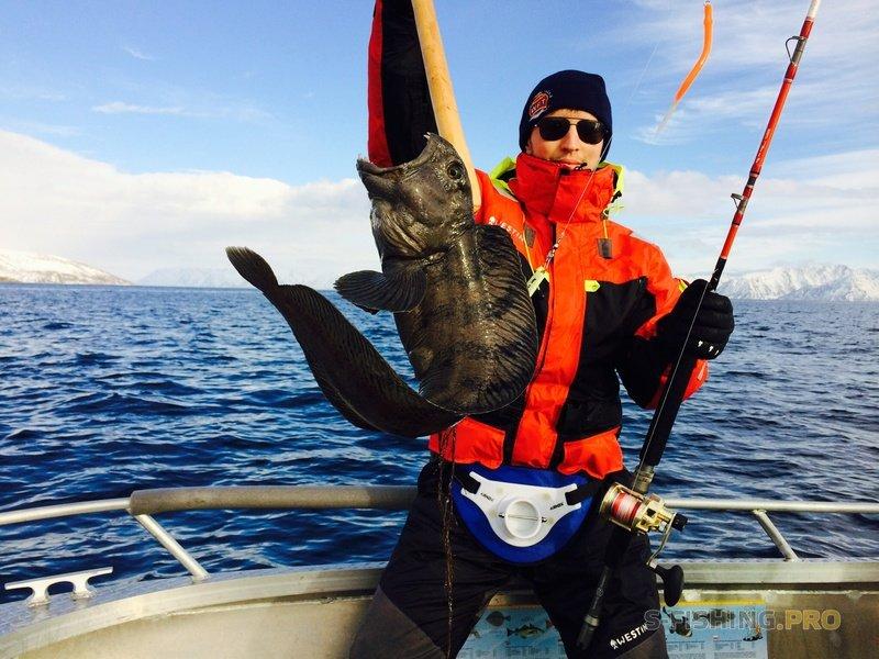 World Fishing Tackle: Как правильно выбрать электрокатушку