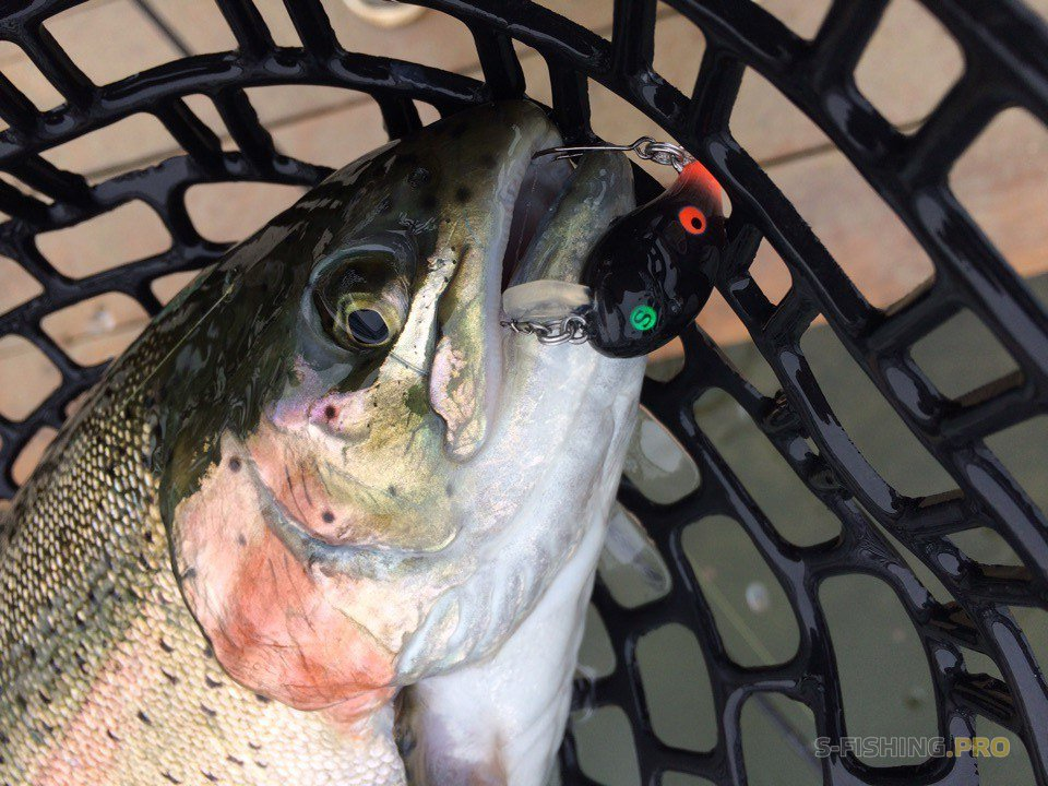 Рыбалка после турнира