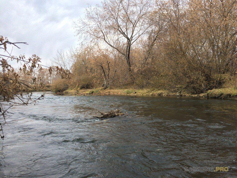 Отчеты с водоемов: Прогулка в пять километров