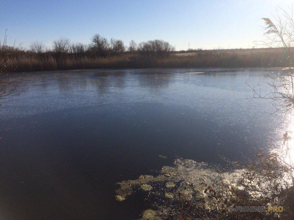 Отчеты с водоемов: Последние деньки на домашней реке