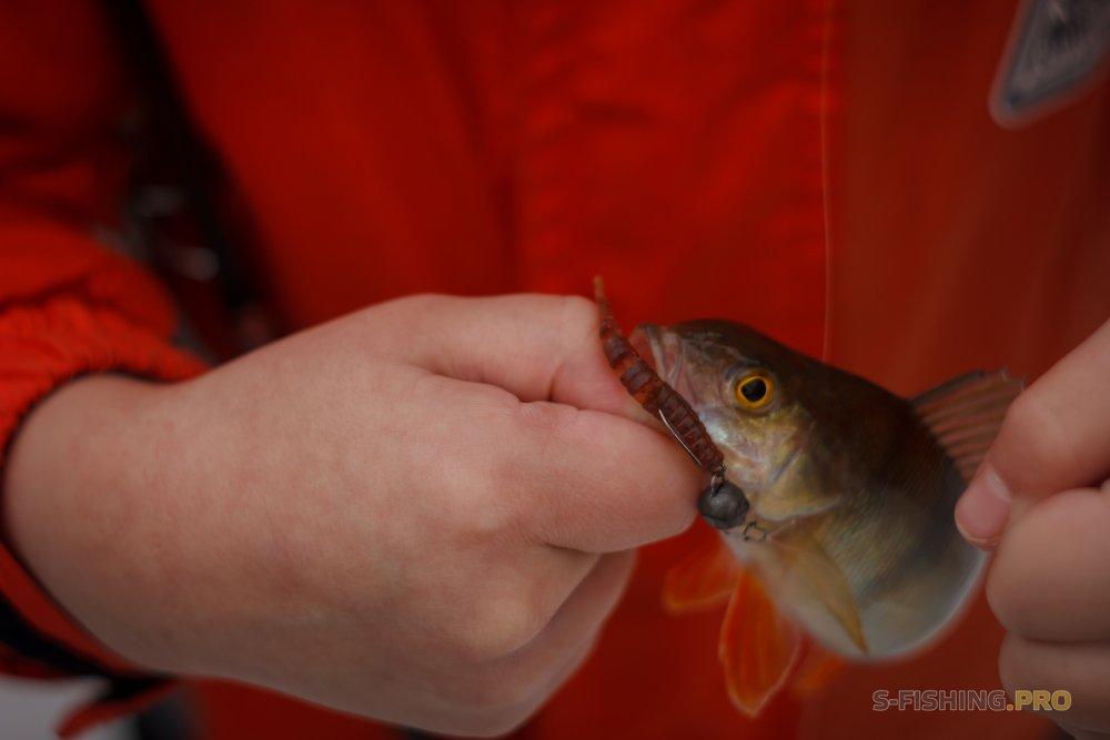 Отчеты с водоемов: Последняя рыбалка 2017 года.