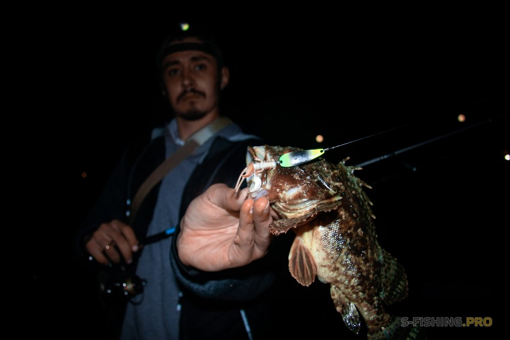 ТМ Crazy Fish: CrazyFish