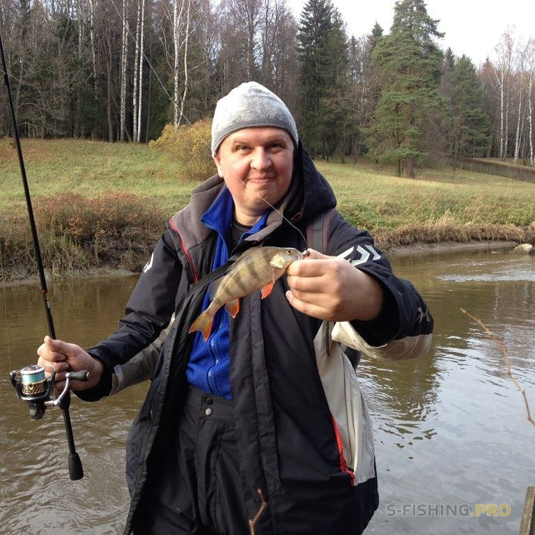 Team of Fishing Actions: Скромный и небольшой отчет о рыбалке в выходные .