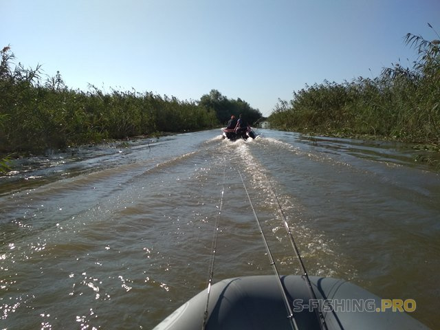 Отчеты с водоемов: Теплые воспоминания