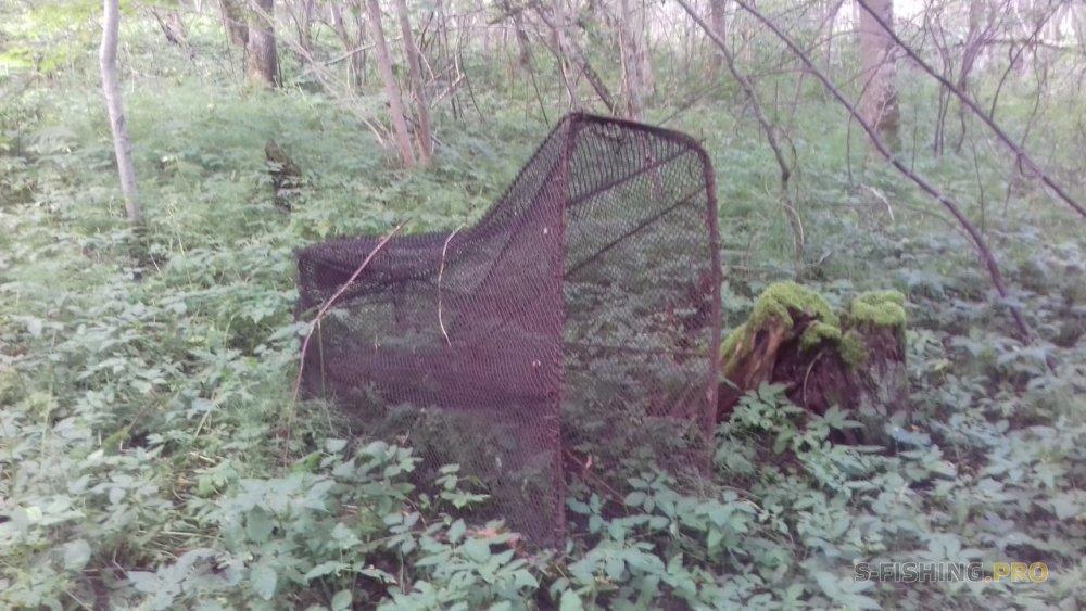 Закрытие прогулок по Псковским джунглям!