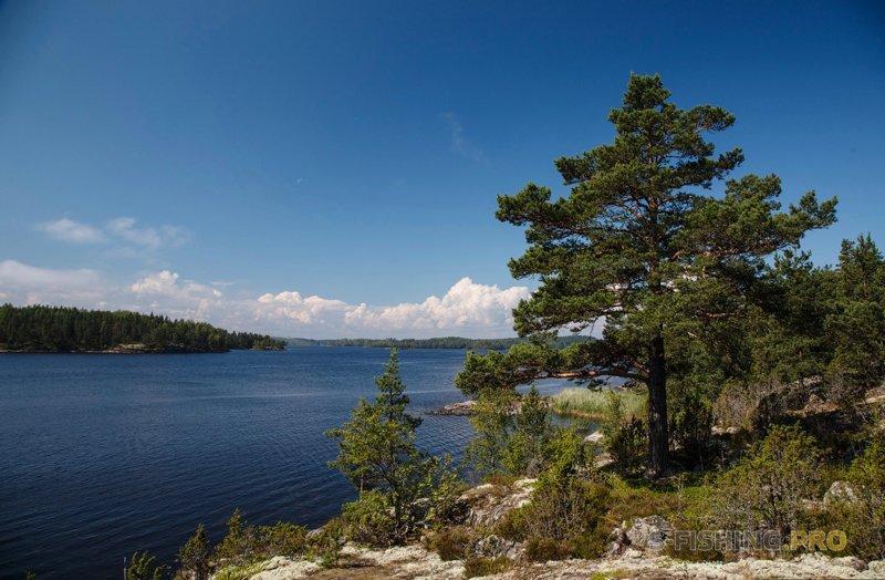 Карелия, шхеры и Ладожское озеро.