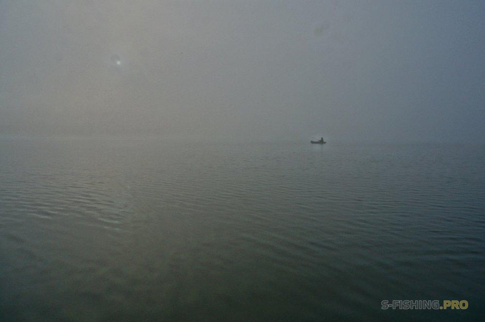 Отчеты с водоемов: Туманные судаки
