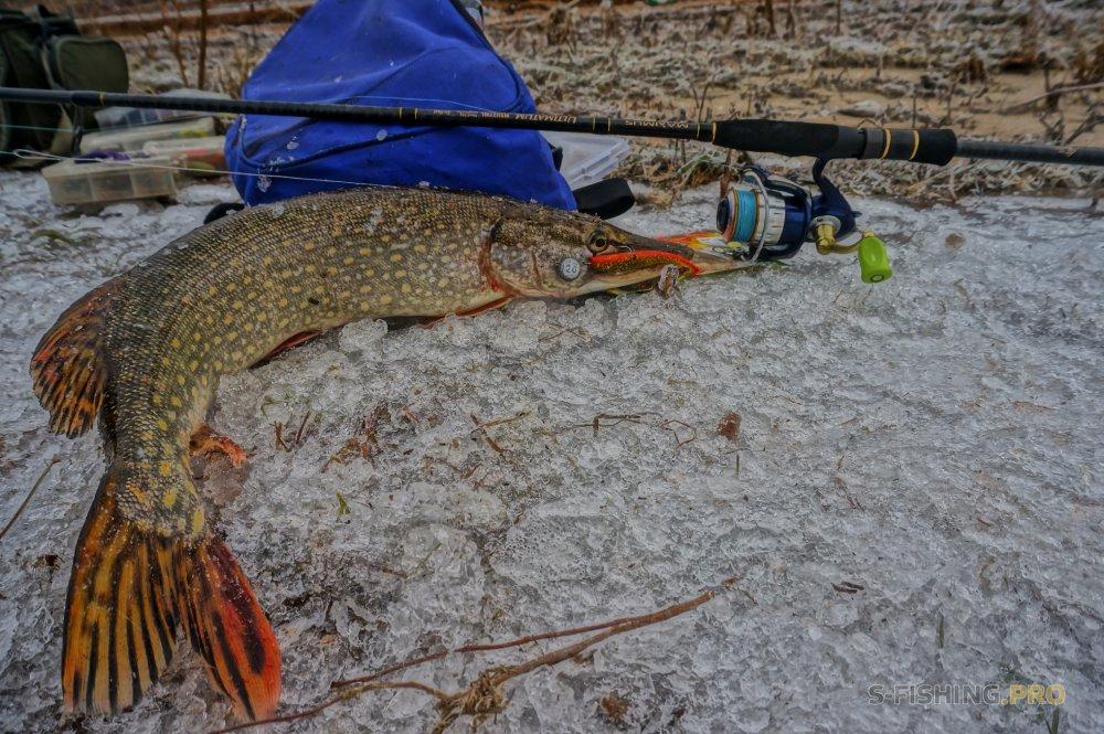 Отчеты с водоемов: Крайняя спиннинговая рыбалка 2017