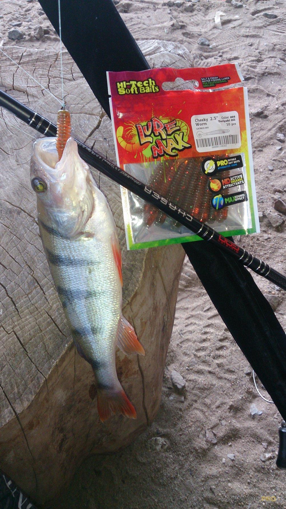 LureMax-очень вкусные приманки для рыбы