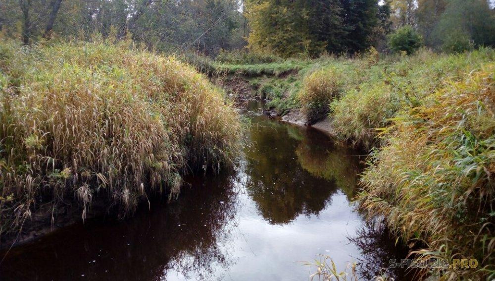 Отчеты с водоемов: Маленькая пробежка с LureMax