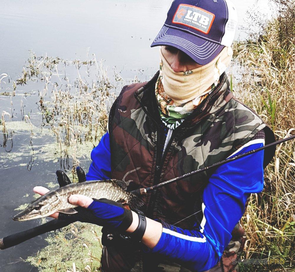 Отчеты с водоемов: Сфотографировал всех щупаков в реке)!