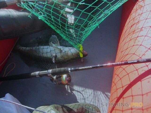 Отчеты с водоемов: Судак на джиг - отчёт с рыбалки на Финском заливе 03.10.2017