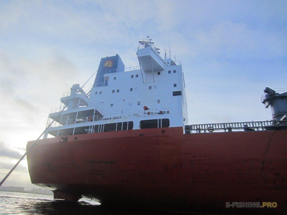 Отчеты с водоемов: Судак на джиг - отчёт с рыбалки на Финском заливе 18.11.2017