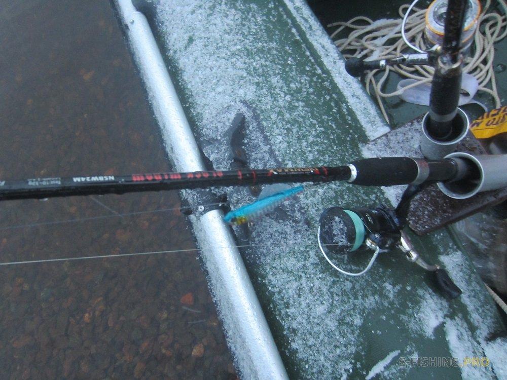 когда и где ловить судака в финском заливе