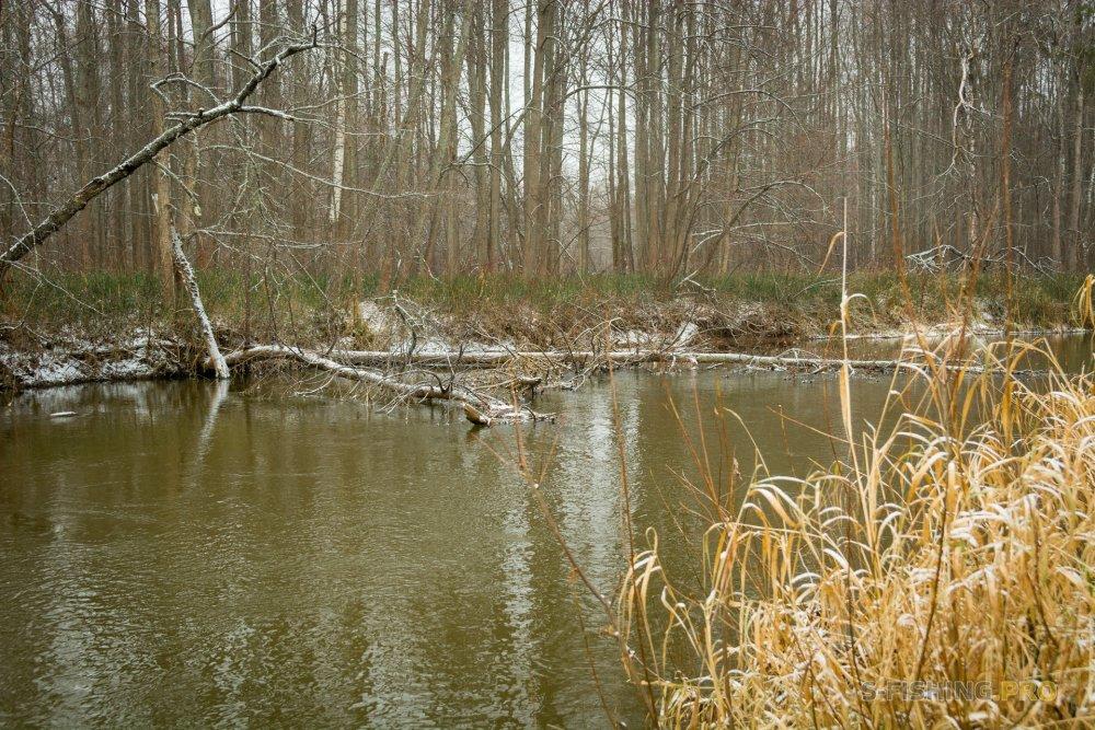 Отчеты с водоемов: Два дня, две реки.