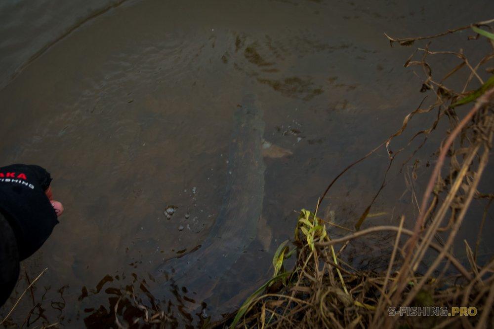 Отчеты с водоемов: Сумасшедшая погода и малая река