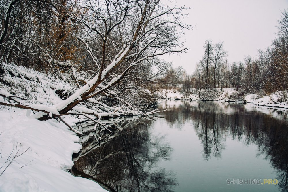 Отчеты с водоемов: Ищем окуня на реке.