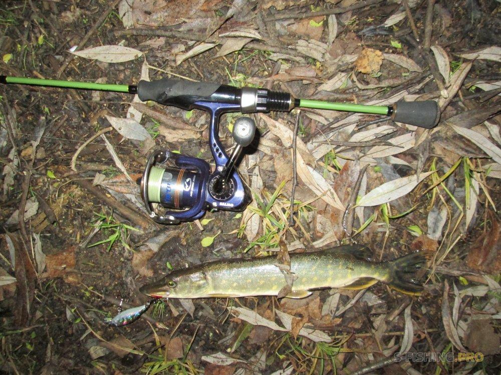 Отчеты с водоемов: Щука в затопленном лесу.