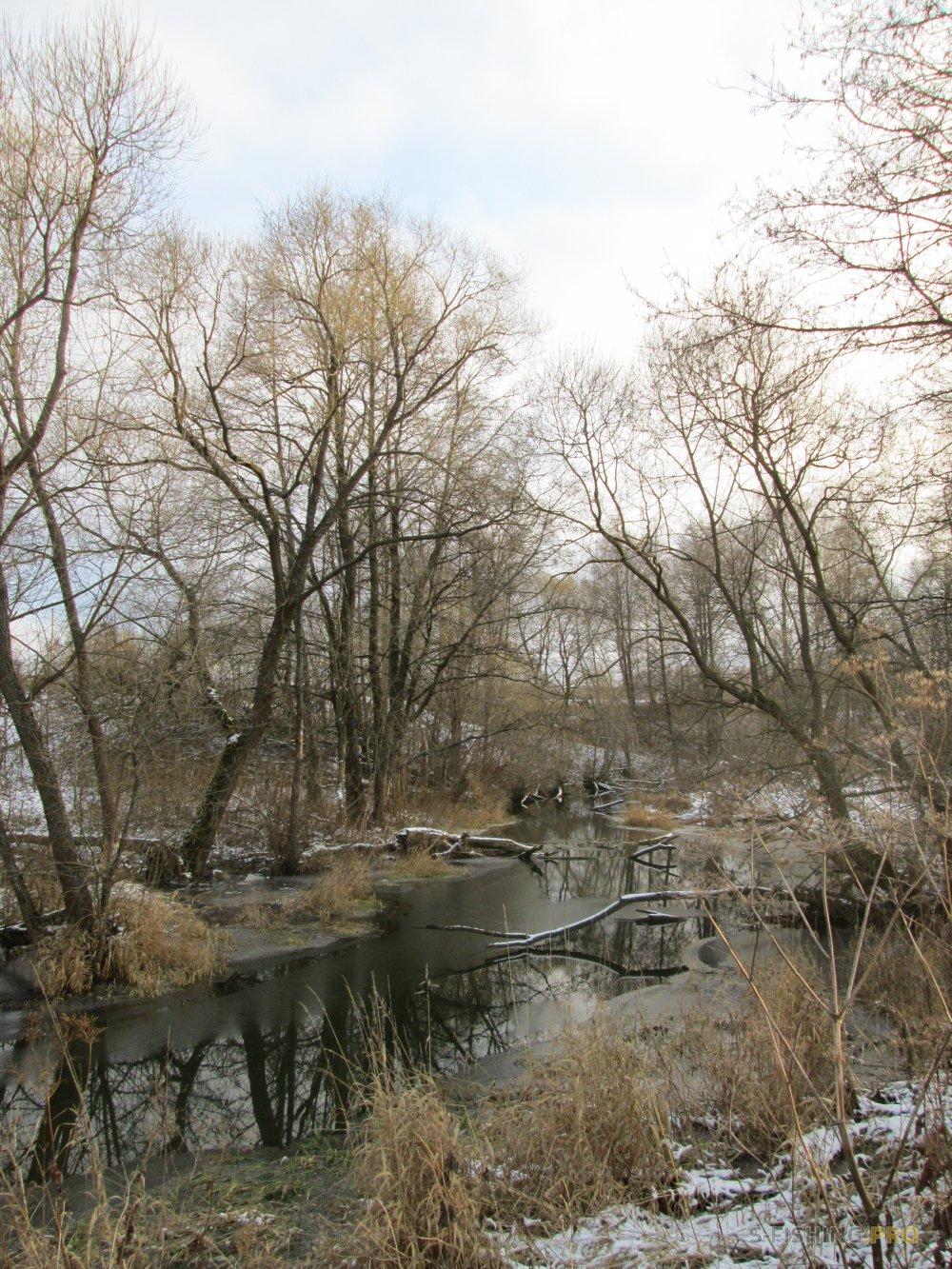 Отчеты с водоемов: Мормышинг в проталинах на малой речке.