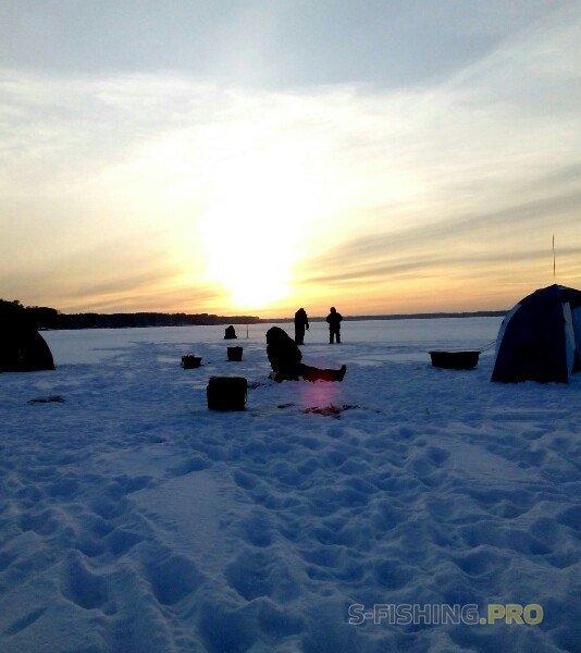 Отчеты с водоемов: День на рыбалке