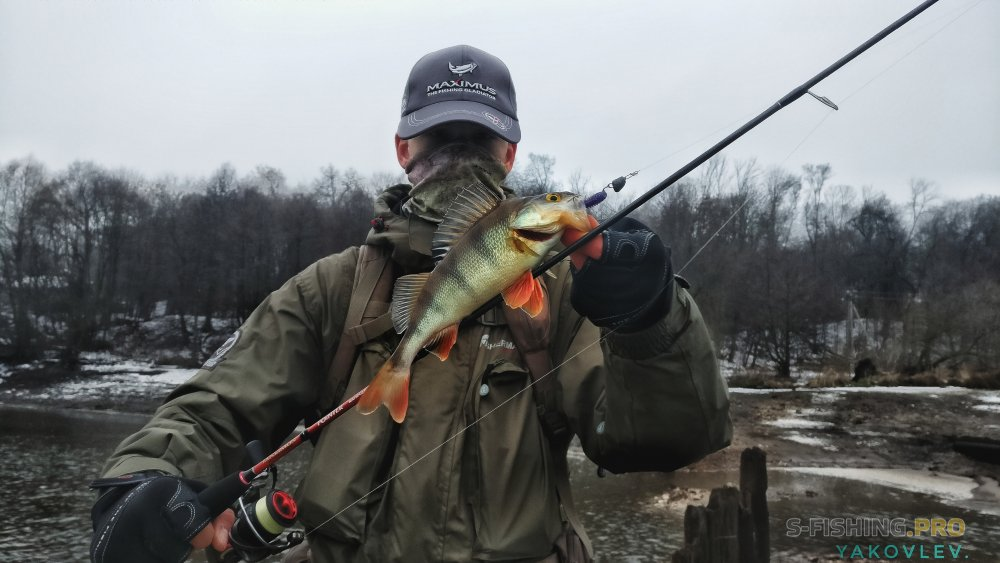 Блог им. ArtemYakovlev: Предновогодние покидушки.