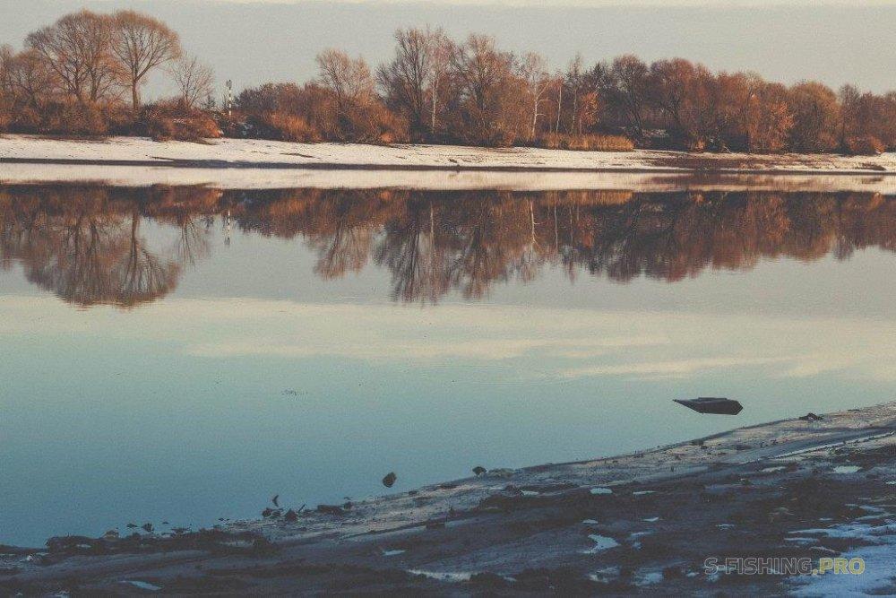 Отчеты с водоемов: Запоздалый отчет тчк
