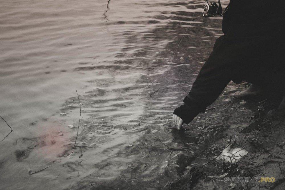 ловля на прудах в запрет