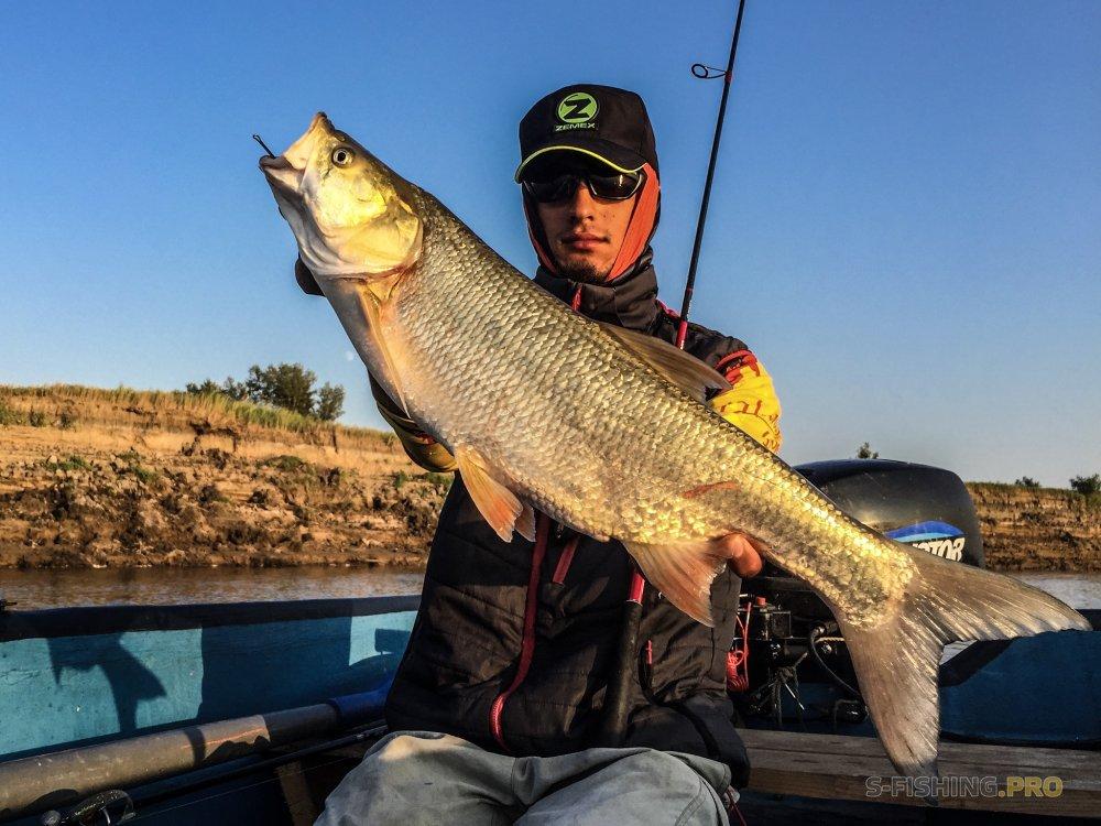 рыбалка на реке кумса