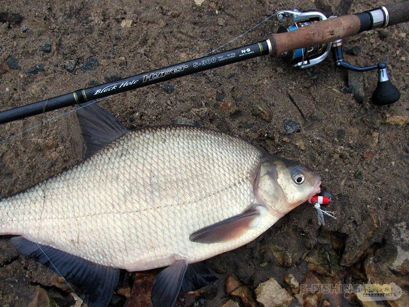 Отчеты с водоемов: Неправильная рыбалка 28.12