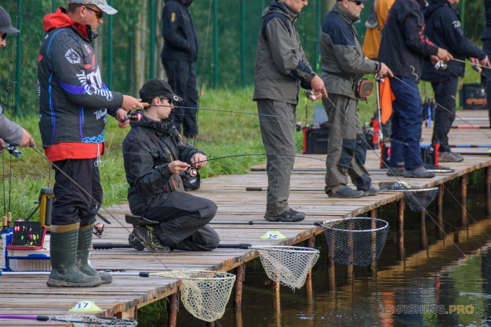 Три разных дня на Рыбных прудах.