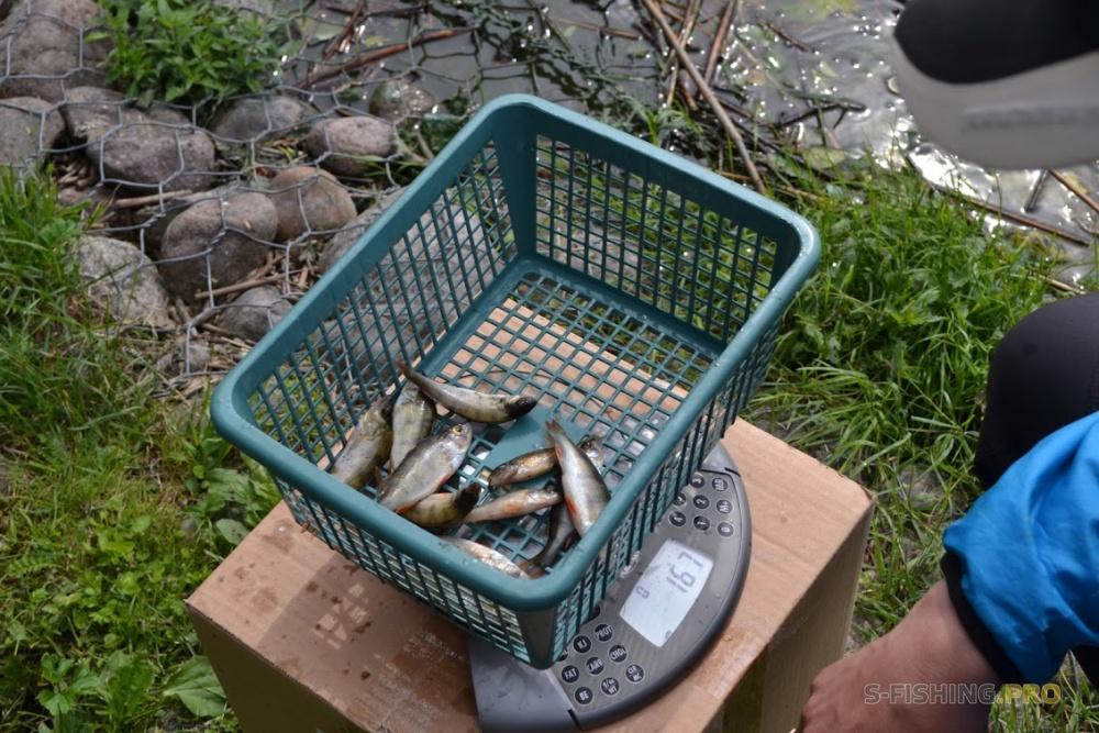охотник рыболов в Санкт-Петербурге