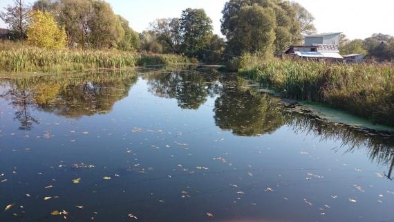 Отчеты с водоемов: Блог им. AntonBelinskiy: щука на малой реки.