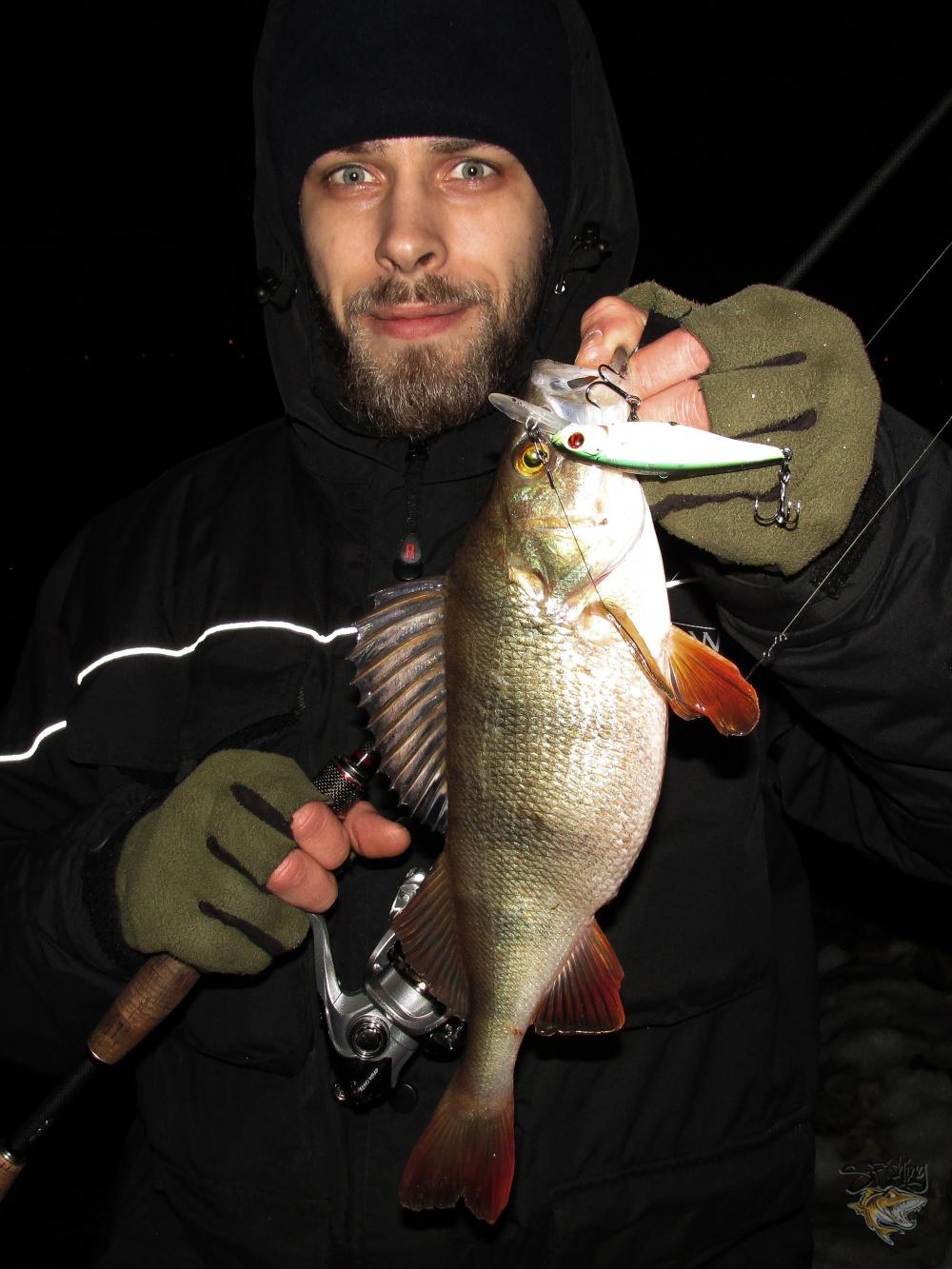 бесплатная рыбалка в москве и подмосковье