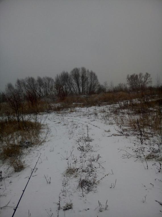 Отчеты с водоемов: Нижняя Москва-Река. Ловля на отводной поводок.