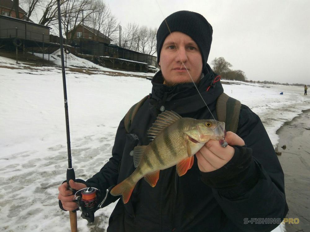 запрет на рыбную ловлю в ярославской обл