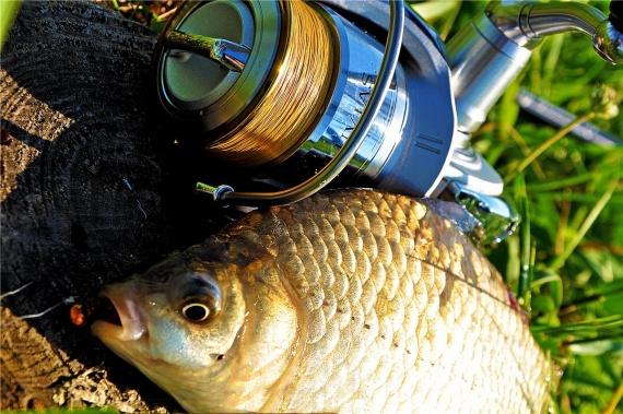 ТМ Crazy Fish: Секретное оружие для наноджига.