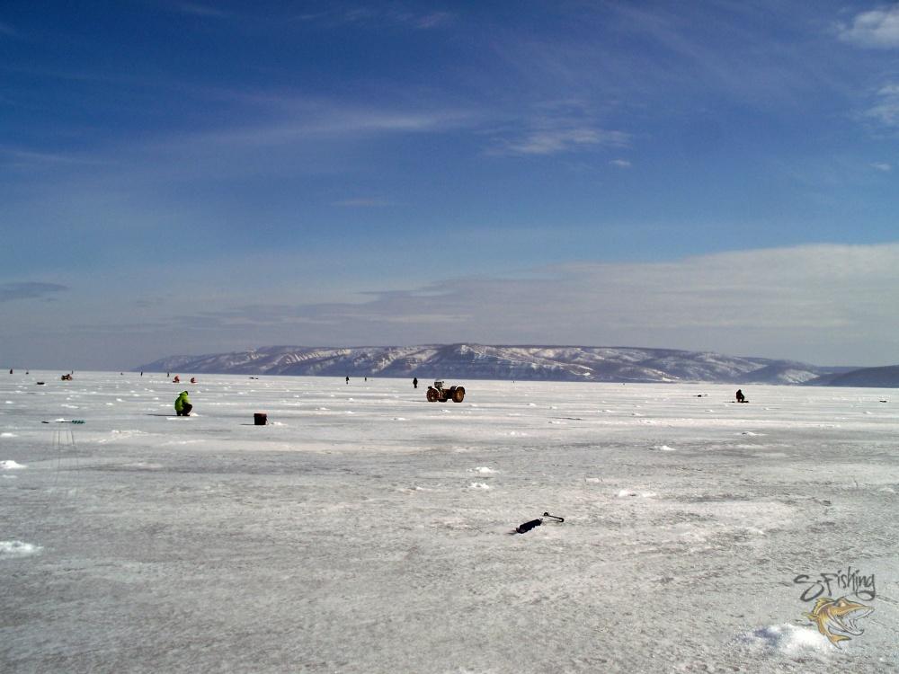 ледяные кроты в действии