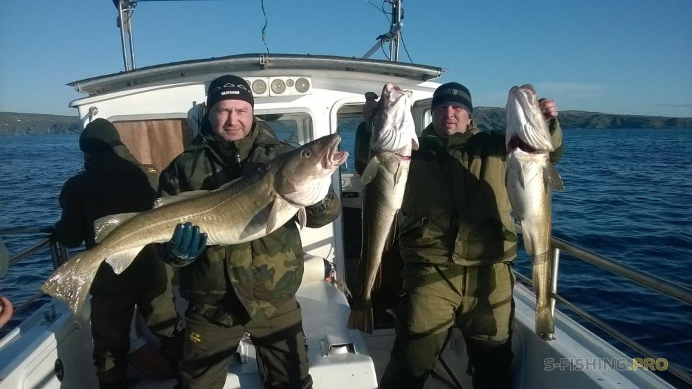 Мурманск форум рыбак