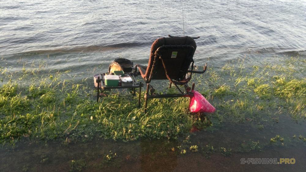 река большая невка рыбалка
