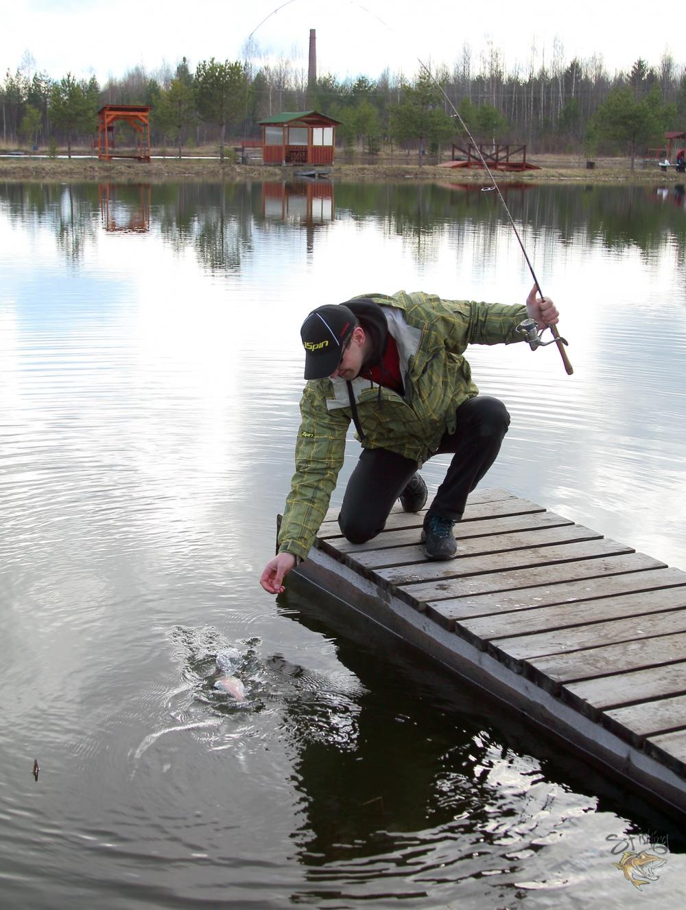 Даже с учётом безбородых крючков рыба села хорошо и сойти у неё не получилось (хотя я и пытался =Р)