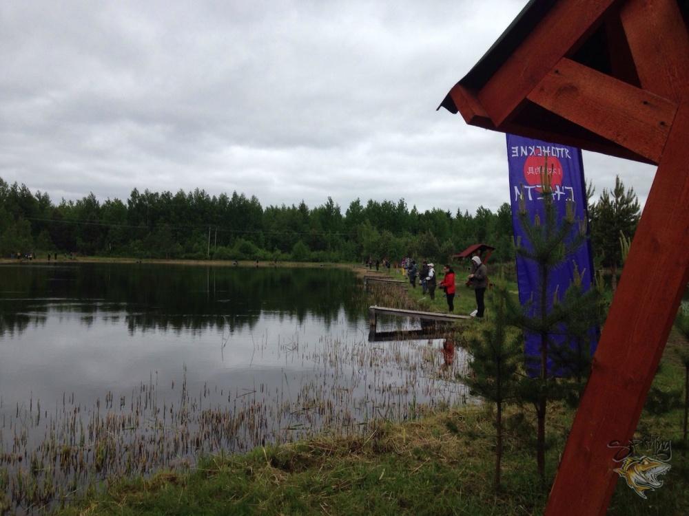 Рыболовный турнир по ловле форели в Лепсари