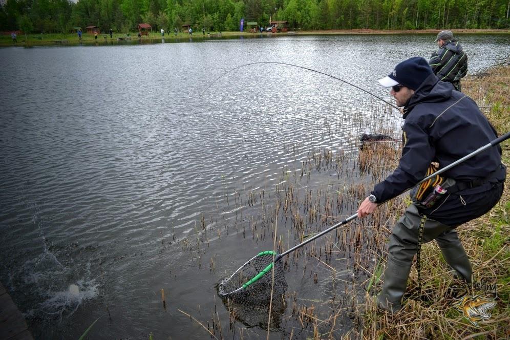 Процесс вылавливания рыбы во время турнира