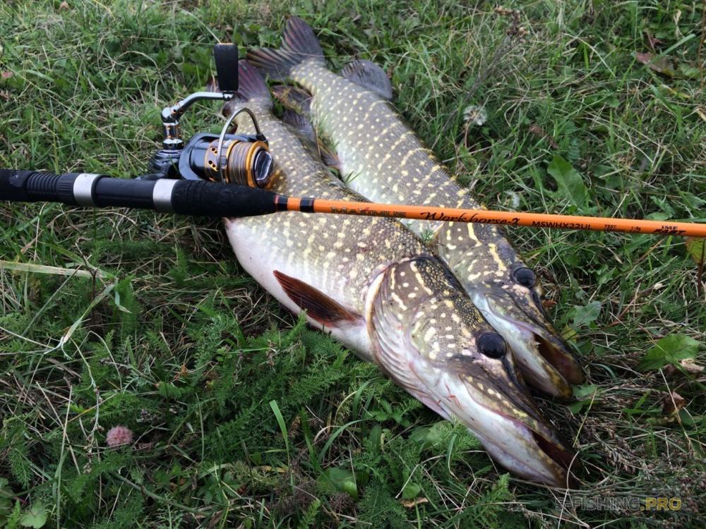 шнуры рыболовные benkei