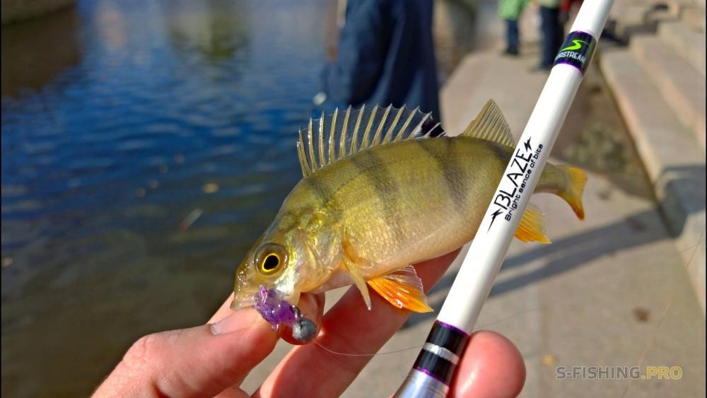 в контакте рыбалка в санкт-петербурге