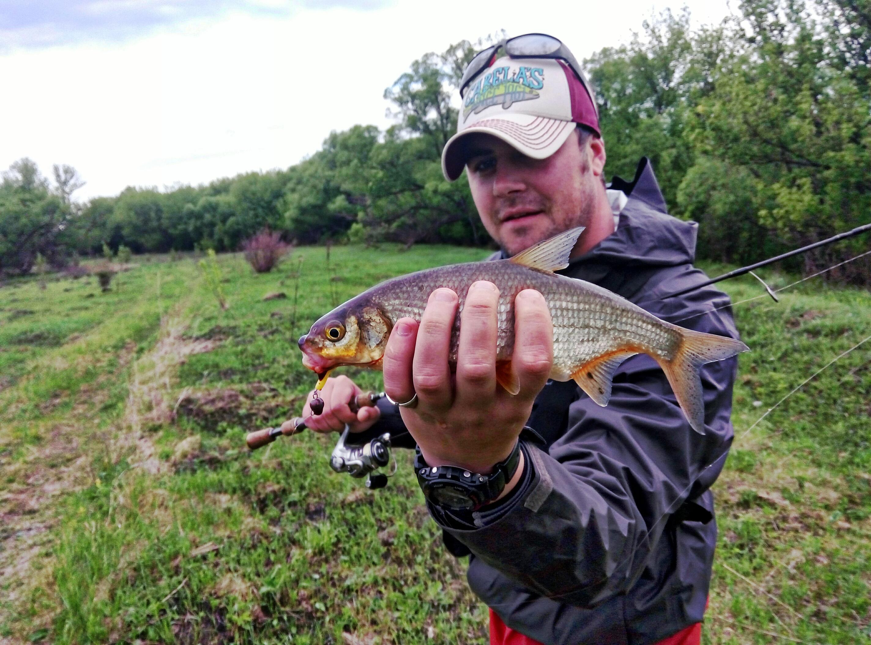 рыбалка хищник в тульской области