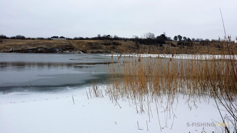 Отчеты с водоемов: Новогодний марафон