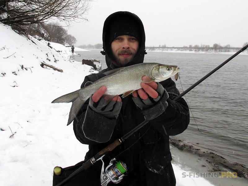 Отчеты с водоемов: All day fishing 20.01