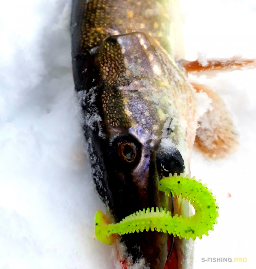 Отчеты с водоемов: Рыбалка на малой реке в снегопад