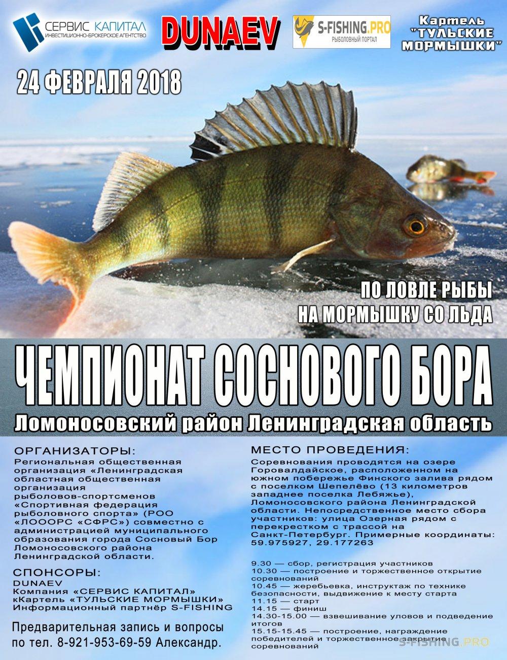 Мероприятия: «Чемпионат Соснового Бора» по ловле рыбы на мормышку со льда 2018 года
